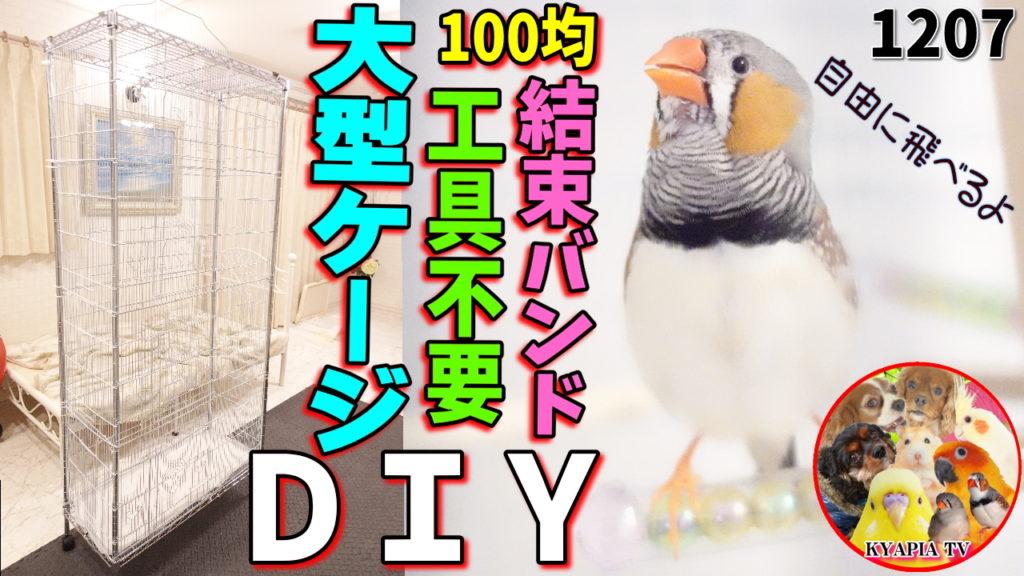 鳥 ケージ